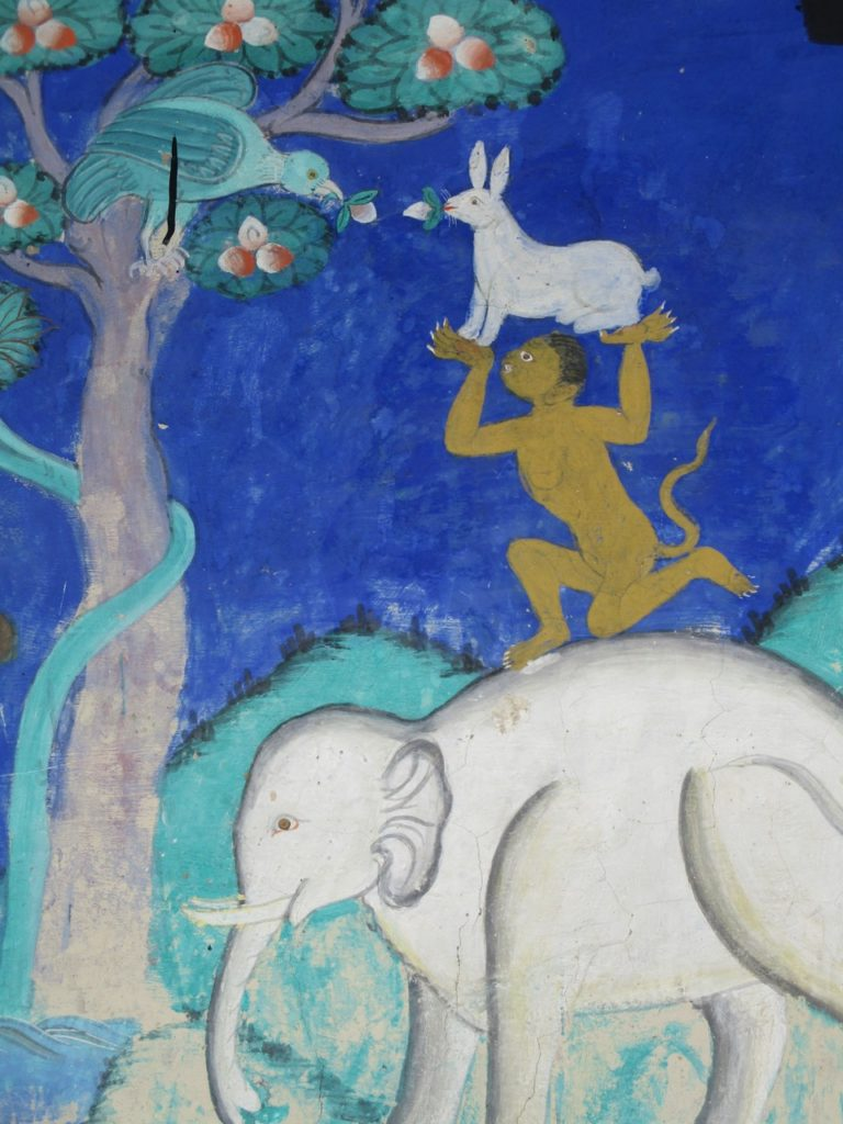 A friendship tale of the elephant, monkey, rabbit and bird, helping each other to get fruit